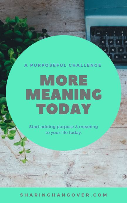 Meaning Challenge